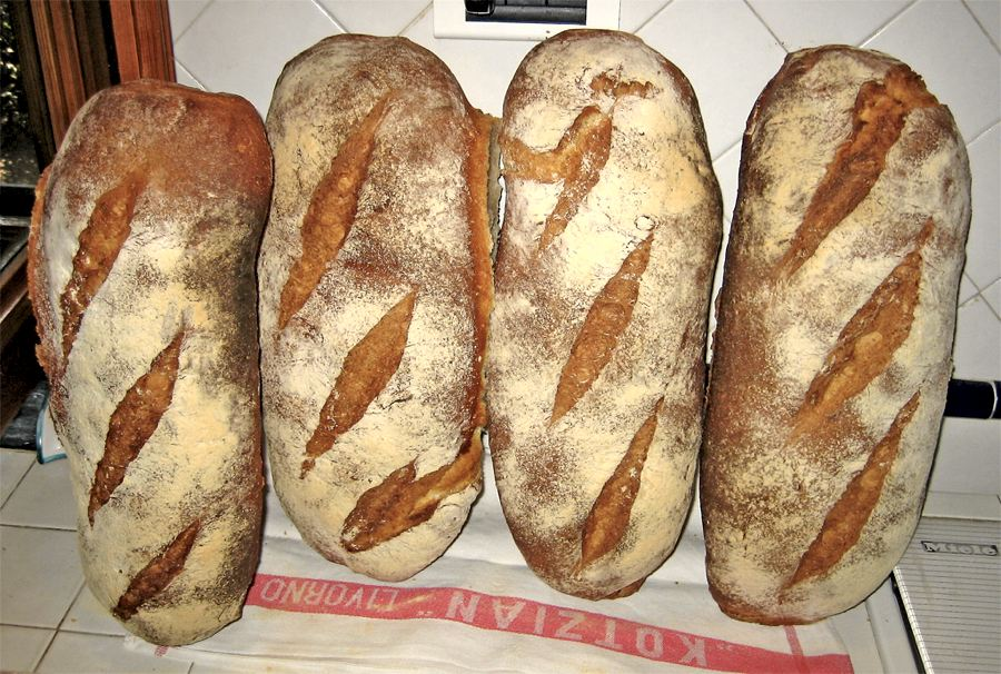 Pagnotte di pane toscano, ovviamente senza sale (foto di fugzu via Flickr)