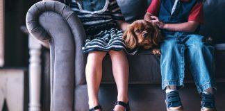 I migliori cani da appartamento