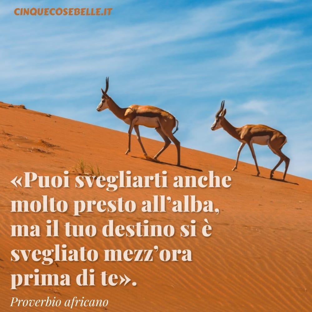 Una frase sull'alba tratta da un proverbio africano