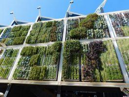 Un orto verticale all'Expo di Milano del 2015