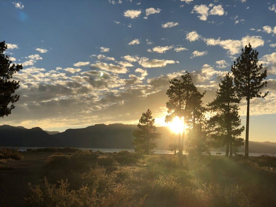 Un tramonto tra gli alberi