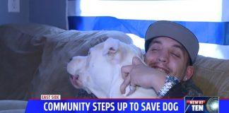 Gemini, il cane che ha dovuto subire l'operazione, col suo padrone Randy