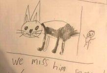 Il manifesto disegnato da Camron per trovare il suo cane scomparso