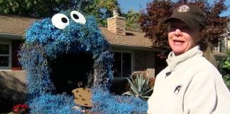 Il Cookie Monster per Halloween