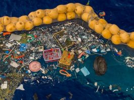 Il sistema di Ocean Cleanup per ripulire il Pacifico