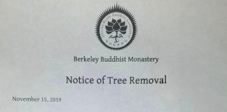 La lettera del monastero buddista sull'abete