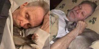Il gatto e il padrone malato di Alzheimer