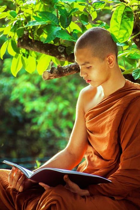 Un monaco buddista in lettura