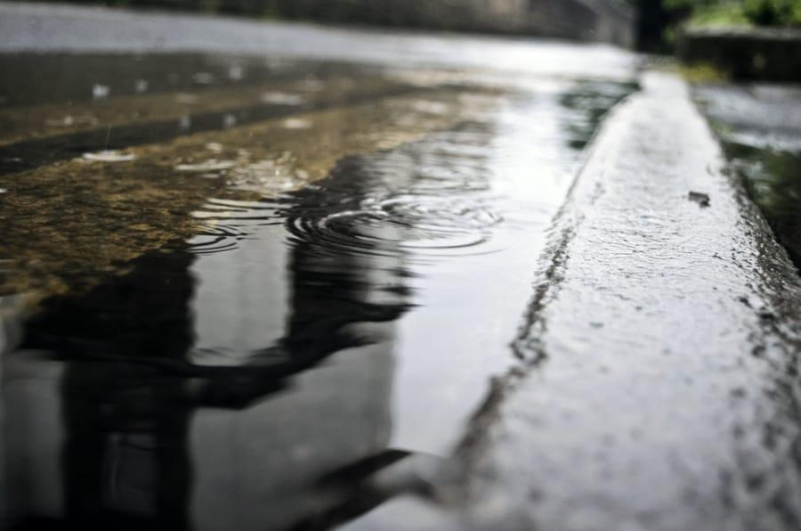 Le cose riflesse nell'acqua di una pozzanghera
